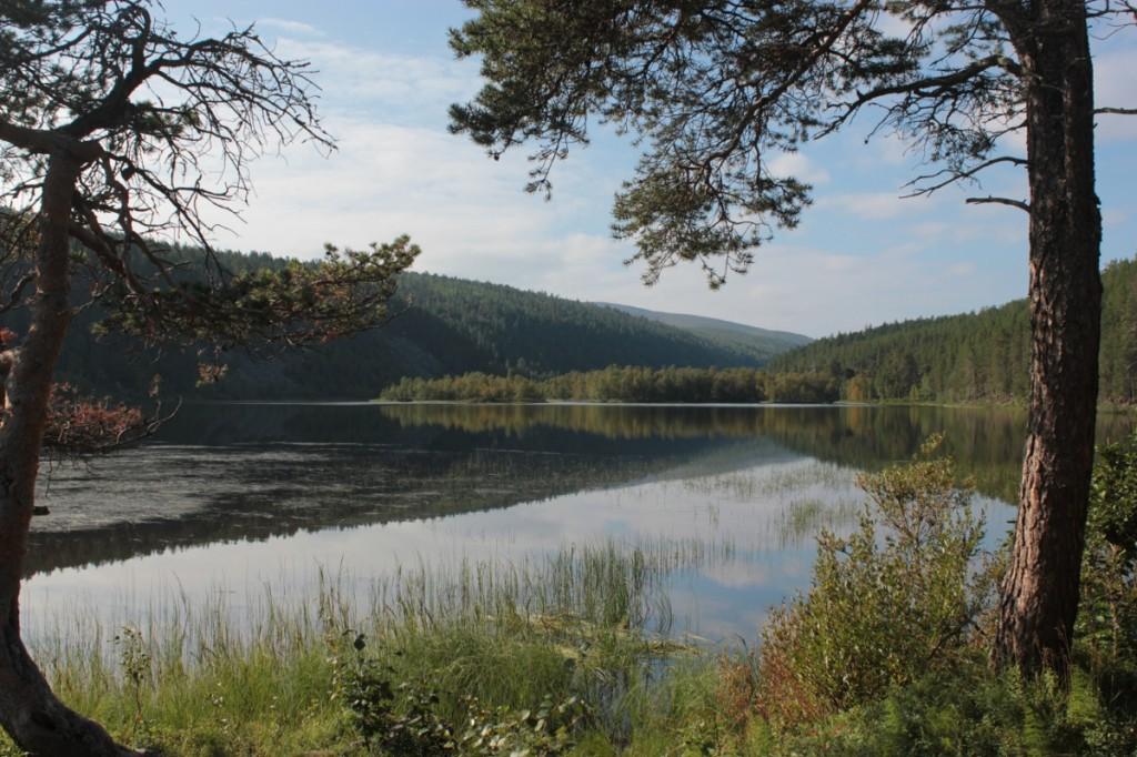 Ravadasjärvi